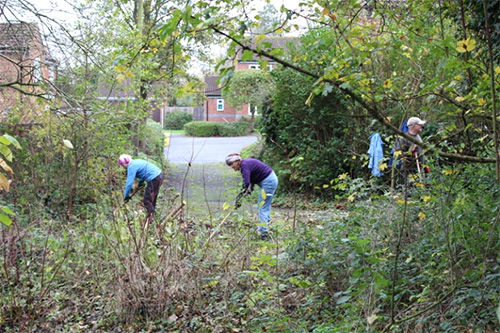 Work underway to create our Bee World – the path leads to Haithwaite
