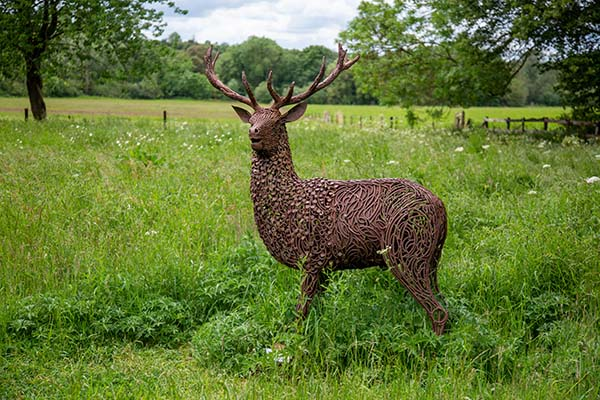 'Lord of all I survey' – representation of a stag in the wildflower meadow