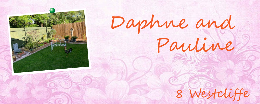 A garden by Daphne and Pauline